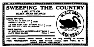 black-swan-sweeping-the-country1